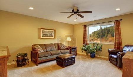 Химчистка мебели и ковров на дому