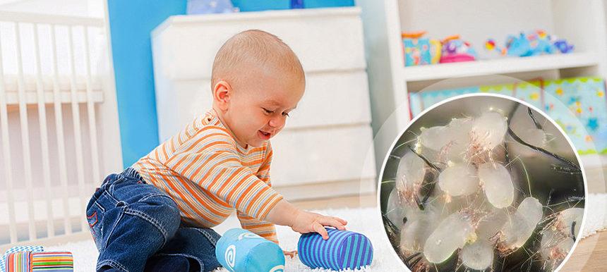 Химчистка ковровых покрытий в детском саду